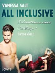 All inclusive – Bekenntnisse eines Callboys 9 - Erotische Novelle