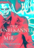 Kai Beisswenger: Der Unbekannte in mir