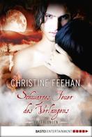 Christine Feehan: Schwarzes Feuer des Verlangens ★★★★★