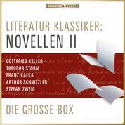 Literatur Klassiker: Novellen II - Die große Box