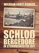 Wilhelm Ernst Asbeck: Schloss Bergedorf in sturmbewegter Zeit