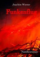 Joachim Werner: Funkenflug