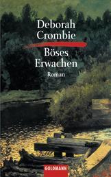 Böses Erwachen - Die Kincaid-James-Romane 6 - Roman