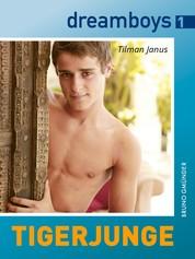 dreamboys 1: Tigerjunge - Ein schwules Dschungelabenteuer zu dritt