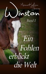 Winston - Ein Fohlen erblickt die Welt - Pferdebuchserie in drei Bänden