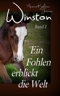 Winston - Ein Fohlen erblickt die Welt