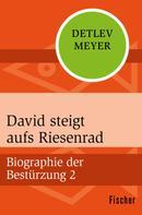 Detlev Meyer: David steigt aufs Riesenrad