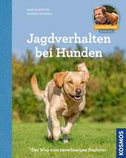 Jagdverhalten bei Hunden - Der Weg zum zuverlässigen Begleiter