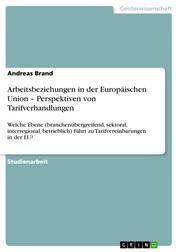 Arbeitsbeziehungen in der Europäischen Union – Perspektiven von Tarifverhandlungen - Welche Ebene (branchenübergreifend, sektoral, interregional, betrieblich) führt zu Tarifvereinbarungen in der EU?