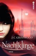 Jon Courtenay Grimwood: Nachtklinge ★★★★★
