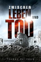 Zwischen Leben und Tod - Hamburg in Trümmern 2 (Kriminalroman)
