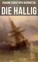 Johann Christoph Biernatzki: Die Hallig