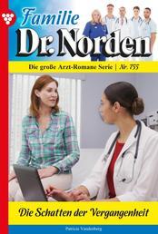 Familie Dr. Norden 755 – Arztroman - Die Schatten der Vergangenheit