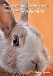 Wertvolle Tipps zur artgerechten Haltung von Kaninchen