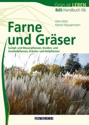 Farne und Gräser - Sumpf- und Wasserpflanzen, Knollen- und Zwiebelpflanzen, Kräuter- und Heilpflanzen