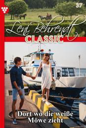 Leni Behrendt Classic 37 – Liebesroman - Dort, wo die weiße Möwe zieht