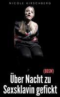 Nicole Kirschberg: Über Nacht zu Sexsklavin gefickt (BDSM)