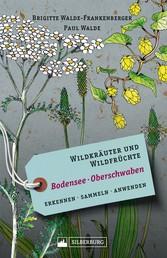 Wildkräuter und Wildfrüchte Bodensee Oberschwaben - Erkennen, sammeln, anwenden