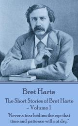 "The Short Stories of Bret Harte Vol 1 - ""Man has the possibility of existence after death. But possibility is one thing and the realization of the possibility is quite a different thing."""
