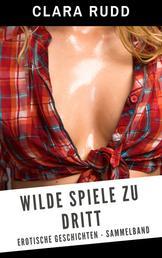Wilde Spiele zu dritt - Erotische Geschichten - Sammelband