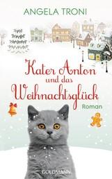 Kater Anton und das Weihnachtsglück - Kater Anton Band 1 - Roman