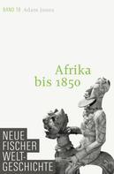 Prof. Dr. Adam Jones: Neue Fischer Weltgeschichte. Band 19