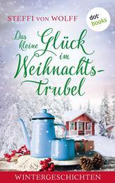 Das kleine Glück im Weihnachtstrubel - Wintergeschichten