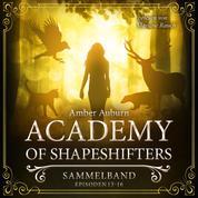 Academy of Shapeshifters - Sammelband 4 - Episode 13-16