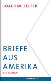 Briefe aus Amerika - Ein Roman