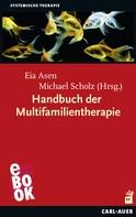 Eia Asen: Handbuch der Multifamilientherapie