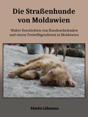 Die Straßenhunde von Moldawien - Wahre Geschichten von Hundeschicksalen und einem Freiwilligendienst in Moldawien