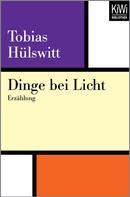Tobias Hülswitt: Dinge bei Licht
