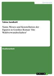 """Name, Wesen und Konstellation der Figuren in Goethes Roman """"Die Wahlverwandtschaften"""""""