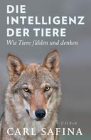Carl Safina: Die Intelligenz der Tiere ★★★★★