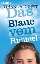 Das Blaue vom Himmel - Roman