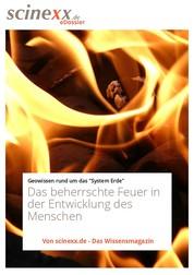 Die Macht des Feuers - Das beherrschte Feuer in der Entwicklung des Menschen