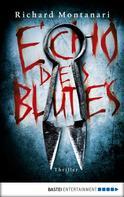 Richard Montanari: Echo des Blutes ★★★★