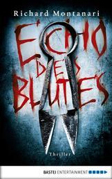 Echo des Blutes - Thriller