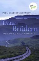 Paul C. Meynert: Unter Brüdern