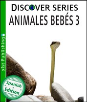 Animales Bebés 3