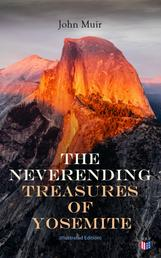 The Neverending Treasures of Yosemite (Illustrated Edition)