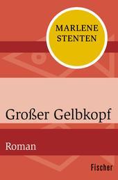 Großer Gelbkopf - Roman
