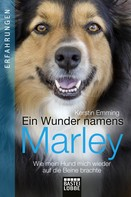 Kerstin Emming: Ein Wunder namens Marley ★★★★★