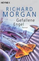 Gefallene Engel - Roman