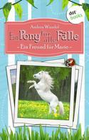 Andrea Wandel: Ein Pony für alle Fälle - Erster Roman: Ein Freund für Marie ★★★★★