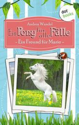 Ein Pony für alle Fälle - Erster Roman: Ein Freund für Marie