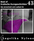 Angelika Nylone: Erotische Kurzgeschichten - Best of 43 ★★★★