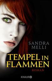 Tempel in Flammen - Roman