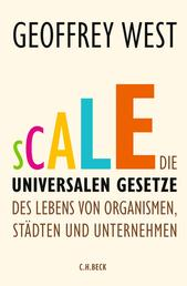 Scale - Die universalen Gesetze des Lebens von Organismen, Städten und Unternehmen