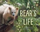 Nicholas Read: A Bear's Life